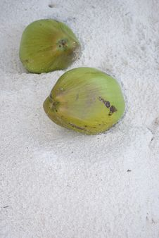 Free Coconut Fruit On The Beach Sand Royalty Free Stock Images - 4797269