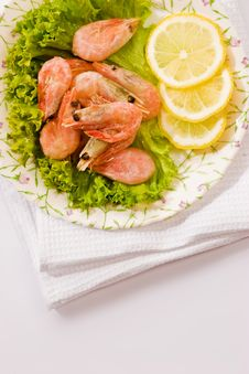 Free Shrimp Stock Photography - 4798722
