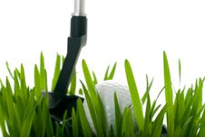 Golf Ball On Grass Isolated Stock Images