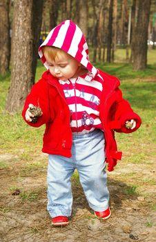 Little Girl Walks  In A Wood Stock Photos