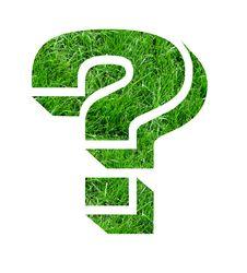 Free Lawn Designs Stock Photos - 4799693