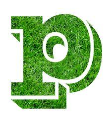 Free Lawn Designs Royalty Free Stock Photos - 4799868
