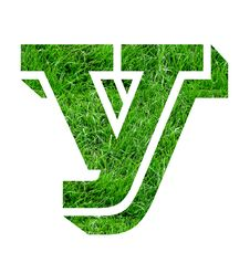 Free Lawn Designs Royalty Free Stock Photos - 4799968