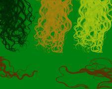 Free Hair Royalty Free Stock Image - 480316