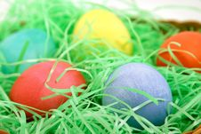 Free Colored Egg Macro Stock Photos - 482143