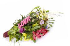Free Flower Arrangement Stock Photography - 4800062