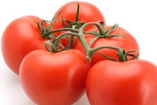 Free Tomatoes UpClose Stock Photography - 4800302