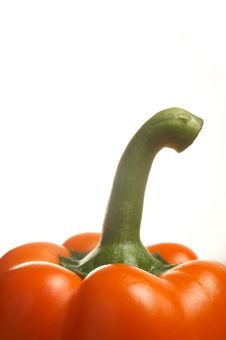Free Pepper Stock Photo - 4800540