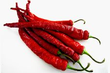 Free Red Chili Pepper Stock Image - 4800831