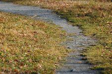 Free Path Stock Image - 4802101