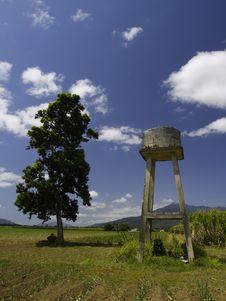 Free Sugar Water Royalty Free Stock Photo - 4803865