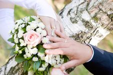 Free Hands With Wedding Rings Stock Images - 4804614