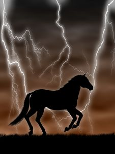Free Horse In The Storm Royalty Free Stock Images - 4805039