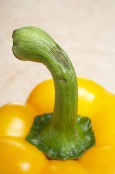 Free Closeup Of Yellow Pepper Stock Photos - 4805103
