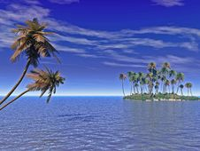 Free Palm Island Stock Photos - 4805423