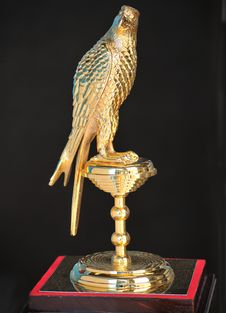 Golden Falcon Royalty Free Stock Photo