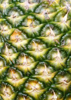 Free Green Pineapple Royalty Free Stock Image - 4809766