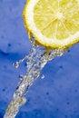 Free Lemon Stock Images - 4817514
