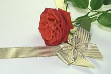 Free Red Rose And Golden Ribbon Royalty Free Stock Photo - 4812705