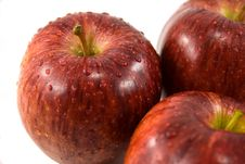 Free Red Apples Royalty Free Stock Photos - 4813418