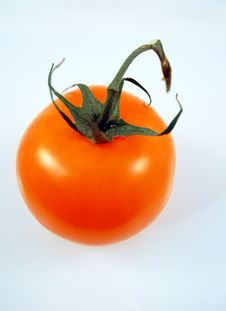 Free Tomato Royalty Free Stock Photography - 4813967
