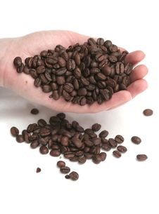 It Is A Lot Of Grains Of Coffee Lay In Hands Royalty Free Stock Photo