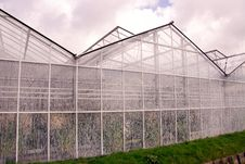 Free Greenhouse Royalty Free Stock Photo - 4816245