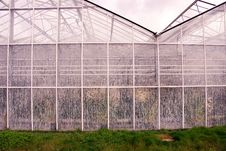 Free Greenhouse Royalty Free Stock Photos - 4816268