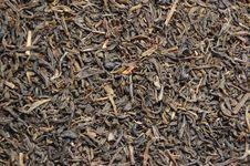 Free Tea Royalty Free Stock Image - 4816676