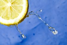 Free Lemon Royalty Free Stock Photo - 4817285