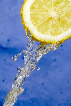 Free Lemon Stock Images - 4817514
