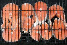 Free Grilled Salmon Stock Photos - 4817783