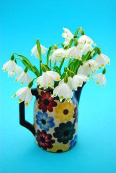 Free Spring Flowers Stock Photos - 4819343