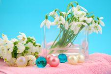 Free Bath Oil Spring Flowers Stock Photo - 4819470