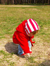 Free Little Girl In A Wood Royalty Free Stock Photos - 4824088