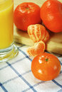 Free Organic Orange Juice Stock Images - 4825104