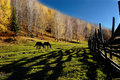 Free Countryside Scenery Stock Photo - 4826250