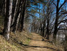 Free Brasov Alley In Spring (Transylvania) Stock Image - 4820671