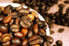 Free Fresh Roasted Coffee Beans Royalty Free Stock Images - 4825419