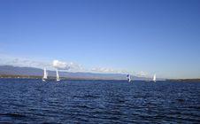 Free Lake Of Geneva Royalty Free Stock Photo - 4825805