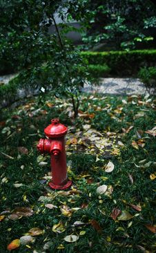 Free Hydrant Royalty Free Stock Photo - 4827825
