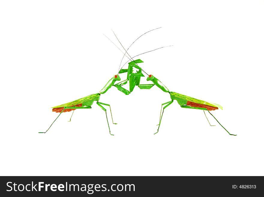Praying mantis vs praying mantis 1e
