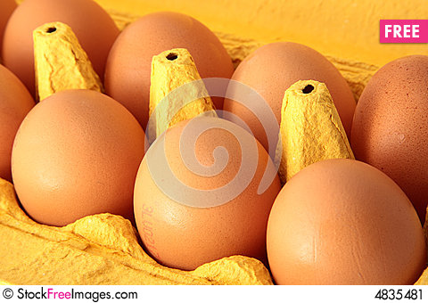 Free 8 Eggs Stock Image - 4835481