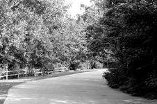 Dark Path Royalty Free Stock Photos