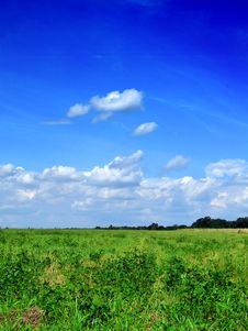 Free Green Grass On Blue Sky Stock Image - 4832361