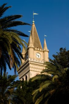 Free Clock Tower And Palm Trees Royalty Free Stock Images - 4832399