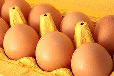 Free 8 Eggs Stock Image - 4835481