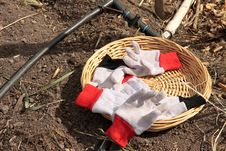 Free Garden Gloves Royalty Free Stock Images - 4837329