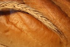 Wheat Ear On The Bread Royalty Free Stock Photography