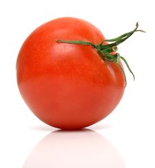 Free Perfect Tomato Stock Photo - 4838380